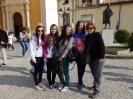 Projekt Comenius – stretnutie v Catanzare, Taliansko