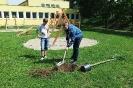 Vysadenie stromčekov v areáli telocvične v prírode na Spojenej škole